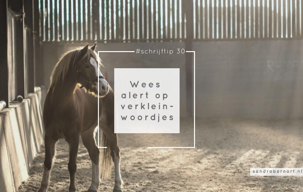 Wees alert op verkleinwoorden